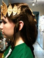 LOZ: Zelda Cosplay: The hair by Akadafeathers
