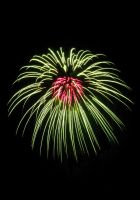 Fireworks Flower by AcceptedOutcast