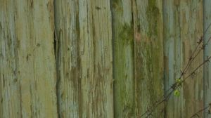 wall texture 7 by SineLuce-stock