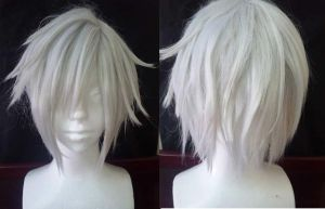 Allen Walker Wig by hs-lee