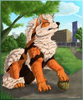 Guardian Arcanine by Tacimur