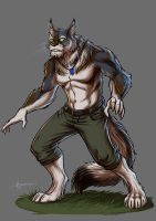 Commission: Fullmoonstar 2014/5 by Ben-G-Geldenhuys