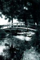 like a bridge, by moen14