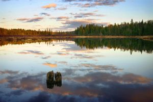 Calm Evening at Little Rapids by tfavretto
