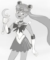 15 min Sailor Moon by AtomicTiki