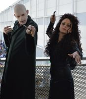 BELLATRIX and VOLDEMORT by saphira-94