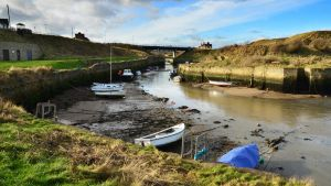 Low Tide Harbour by roodpa