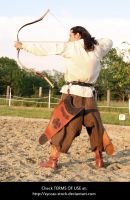 Hungarian Archer 12 by syccas-stock
