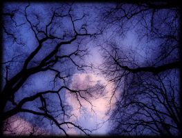 Eerie side of spring by pagan-live-style