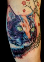 frannie the kitty by tat2istcecil