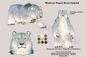 Tigerbear Adoptable #3 [CLOSED] by BearlyFeline