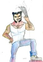 Wolverine The Model by DeviantBoss