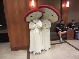 AFest 2012 - Fantasia Mushrooms by Soynuts