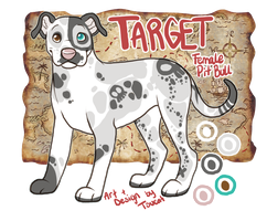 Target Ref 2014 by Toucat