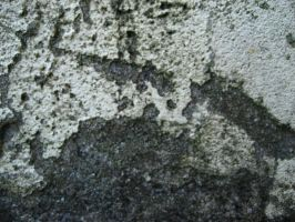 Concrete Texture III by blacklacefigure