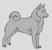 Dog Template - Norwegian Elkhound by NaruFreak123-Bases