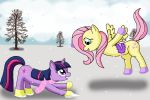Twilight and Fluttershy's Snow Day by jamiecakes349
