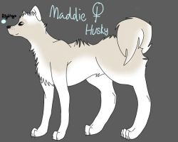 Maddie ref by sshoes