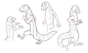 Gecko Sketches by Temiree