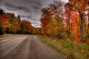 HDR Autumn Trail 3 by Nebey