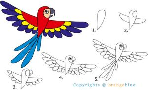 How to Draw - Parrot by eL-Te