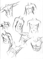 male torso sketches by daylightdreams
