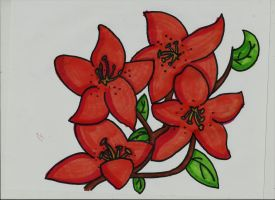 Flower Practice by Dracosia