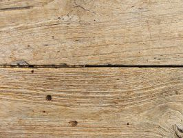 Wood Texture 1 by karmasach