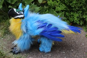 Blue and Gold Macaw Griffin by Creature-Cave