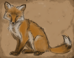 Randomosity Fox by eagle-flyte