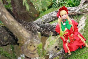 Rozen Maiden - Shinku by Xeno-Photography