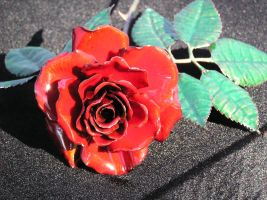 Cedarhurst Red-Orange Rose by knivesandroses