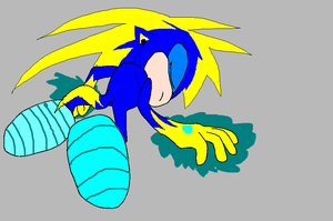 Name my sonic charicter1 by Shadowpaw909
