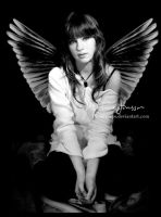 Angel wings by Aoi-kochou