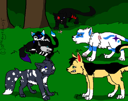 Some of my Warriors by Animaluver21