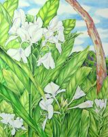 Tantalus White Ginger by joeyartist