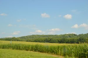 Cornfields and Mountains by bluebetty20