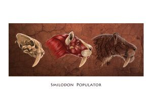 Smilodon Populator by Art-of-Sekhmet
