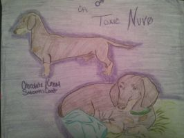 Toxic Nuvo (old ref) by ArsenicLaced-Estate