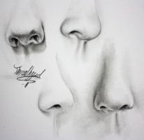 Noses by Thessen