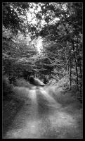 Black and white footway by fee-clochette