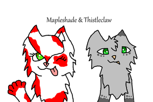 .:CO:. Mapleshade and Thistleclaw by Frozen-Icicles
