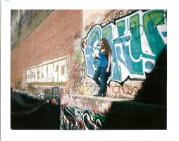 Polaroid santa ana alley by Haeddre