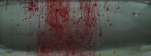 blood??? by peps4o