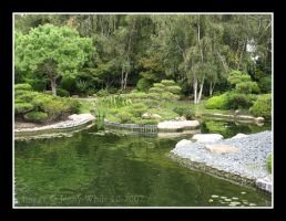 CSULB Garden 1 by JWhile