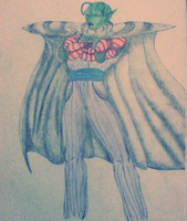 Mr Piccolo by Wolf-Angel-whitewing