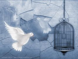 White Doves by Chrisma60