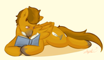 My Little Author by Burnt-X3