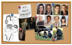 NCIS - Just for fun by Nikky81