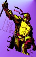 Donatello  Colors by CartoonWatch
